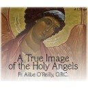 Holy Angels 4 - St. Raphael the Archangel - Fr. Ailbe O'Reilly